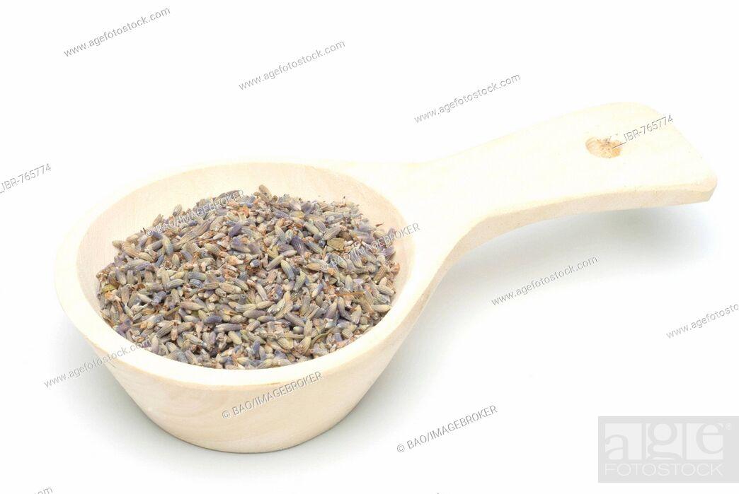 Stock Photo: Lavender (Lavandula angustifolia, Lavandula officinalis, Lavandula vulgaris), medicinal plant, blossoms in a measuring spoon.