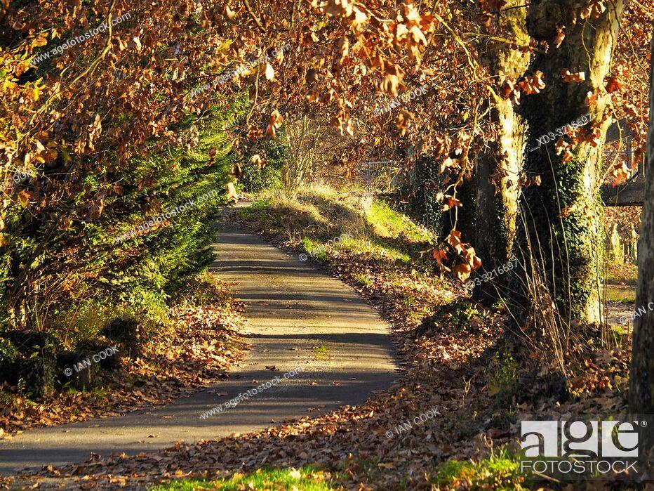 Stock Photo: Canal de Garonne near Marmande in autumn, Lot-et-Garonne Department, Nouvelle Aquitaine, France.