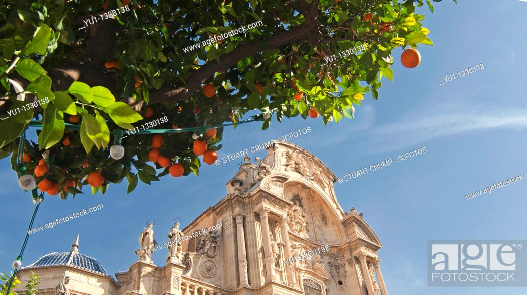 Stock Photo: Main Facade of the Cathedral Church of Saint Mary in Murcia, with orange trees in the foreground, at the plaza del Cardinal Belluga, City of Murcia.