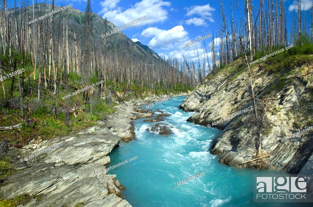 Stock Photo: Vermilion River, Kootenay National Park British Columbia Canada.
