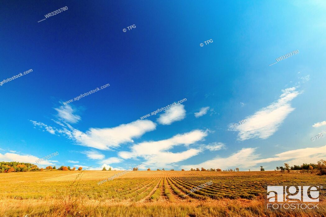 Stock Photo: Field against the sky in Gordes; France.