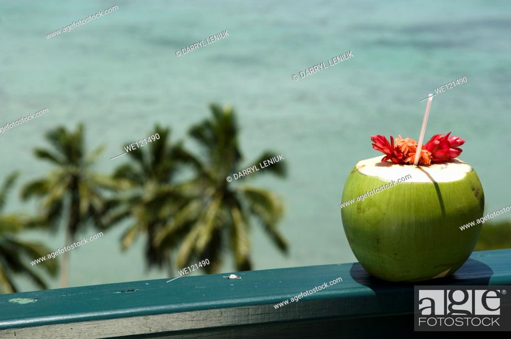 Stock Photo: Coconut, drink.