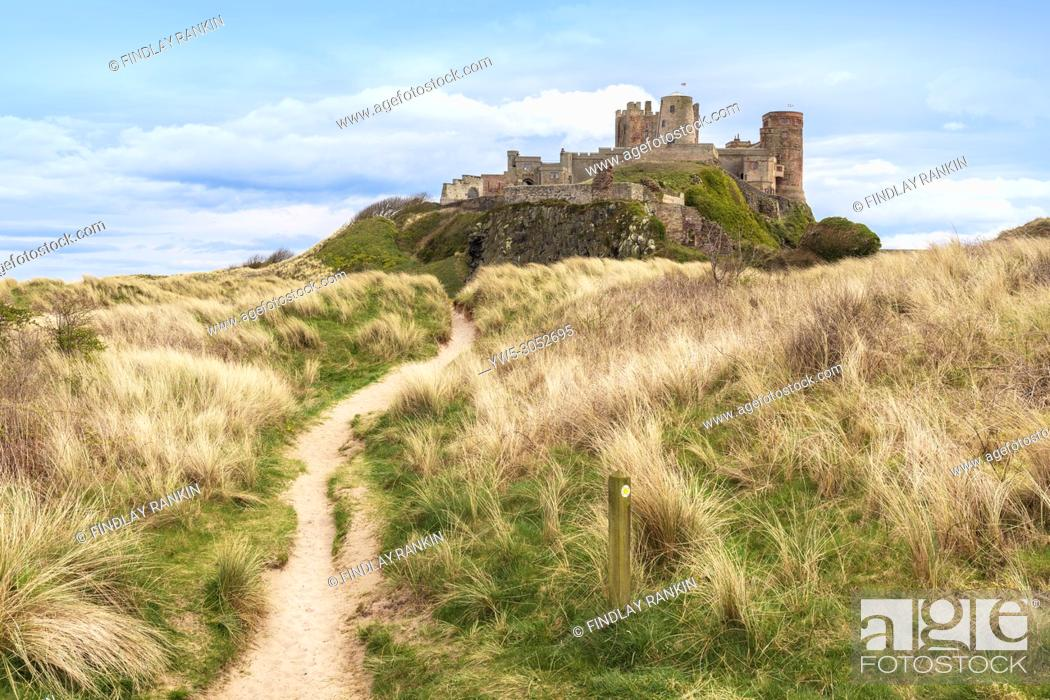 Stock Photo: Northumberland Coastal Path and walk with Bamburgh Castle and sand dunes, Bamburgh, Northumberland, England.