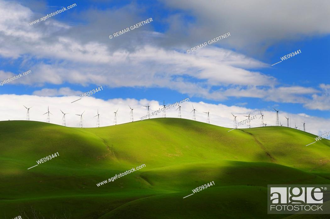 Stock Photo: Winter sun on the rolling green hills of the Altamont Pass wind farm in California.