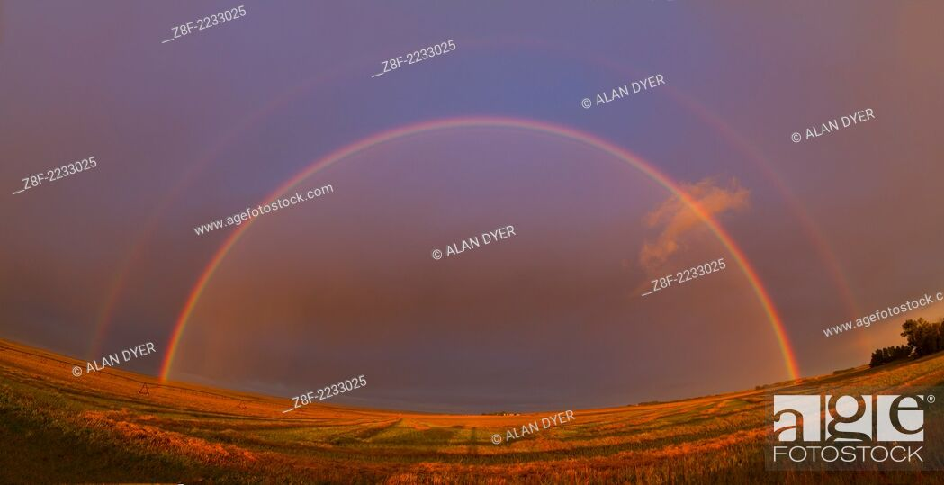 Stock Photo: Bright rainbow created by Sun low in west just about to set with raindrops in the air to the east, and light rain falling at the time.