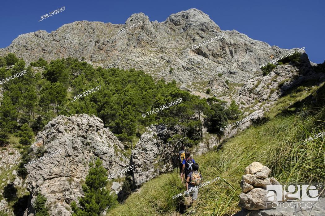 Stock Photo: Hikers in Coma de n'Arbona, Penyal des Migdia, 1401 metres, término municipal de Fornalutx, paraje natural de la Sierra de Tramuntana, Mallorca.