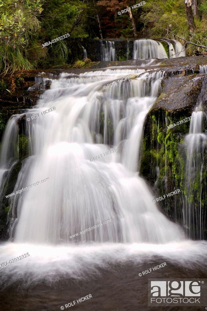 New Zealand South Island Fiordland National Park Boyd