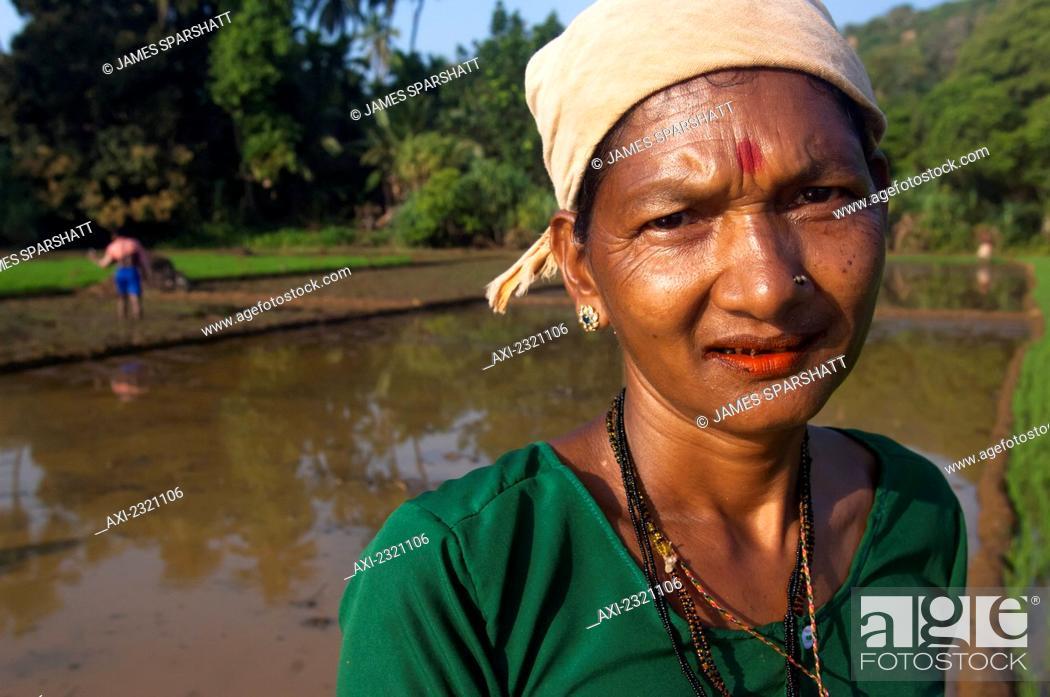 Stock Photo: India, Karnataka, Portrait of female worker in paddy fields; Gokarna.