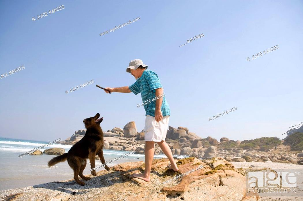 Stock Photo: Man on beach, preparing to throw stick for dog, low angle view.
