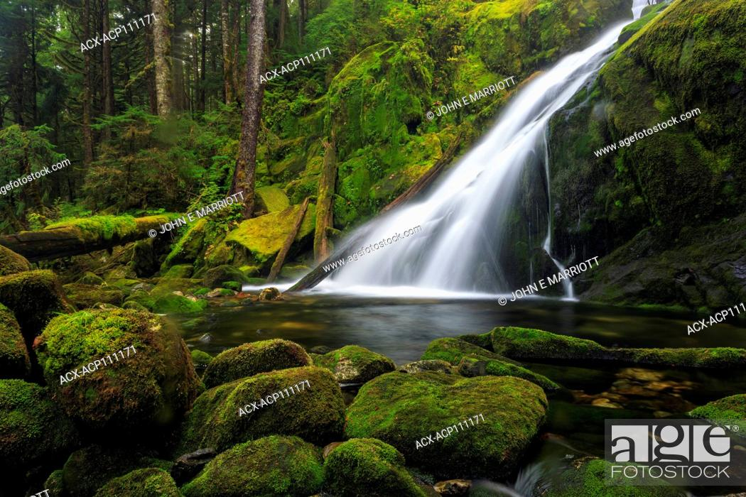 Stock Photo: Small waterfall in the Great Bear Rainforest, BC.