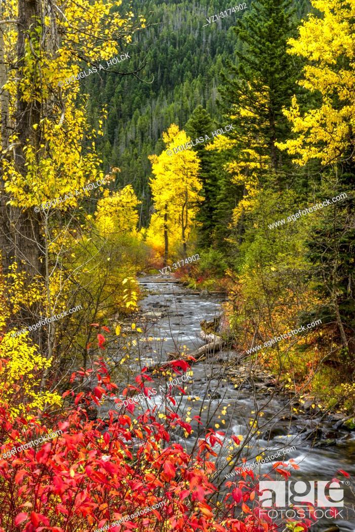 Imagen: A Montana Fall along the Hyalite River USA.