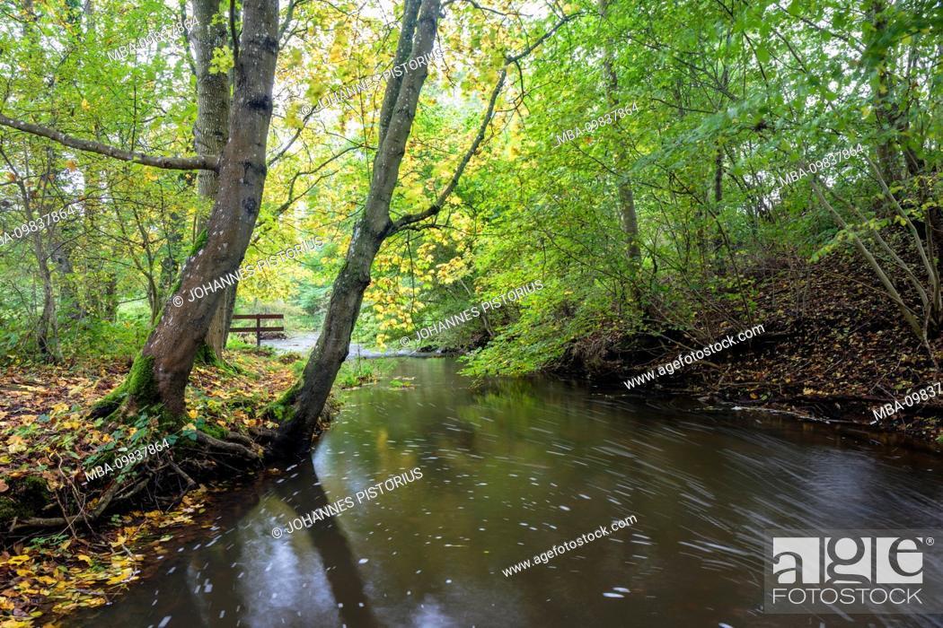 Stock Photo: Europe, Denmark, Bornholm. Autumn mood on the small river Læså.