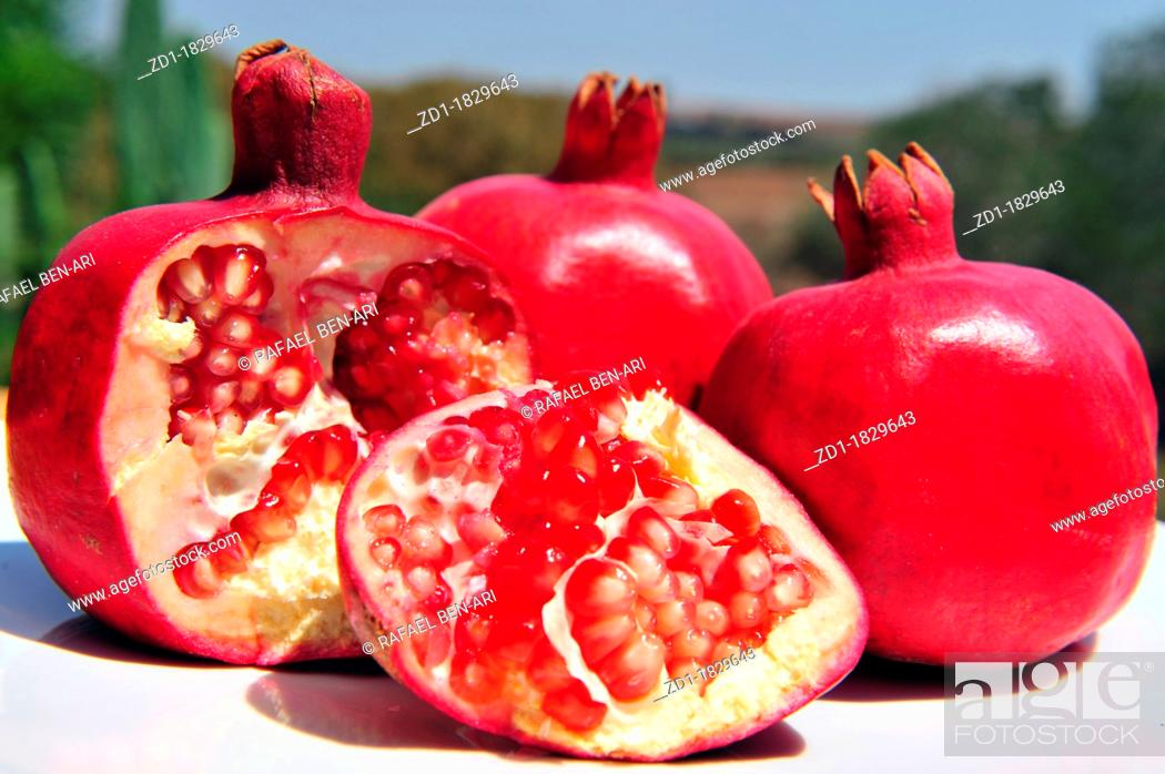 Pomegranate Fruit With Pips In An Outdoor Setting Jewish New Year