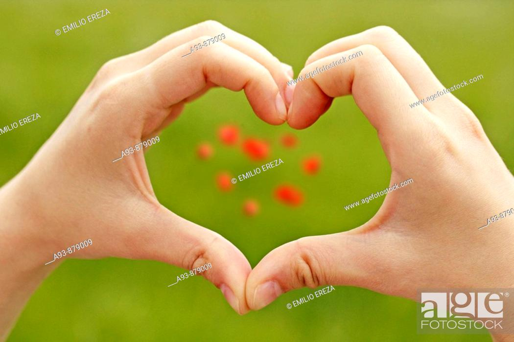 Stock Photo: Heart symbol made from hands and flowers.
