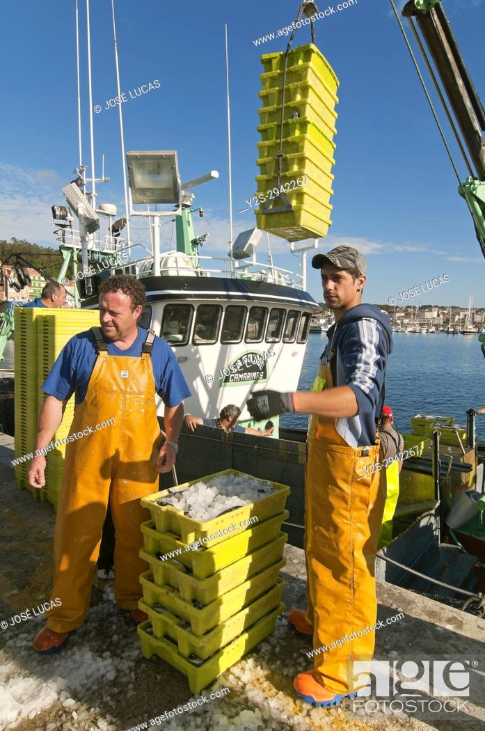 Stock Photo: Fishing boat downloading boxes of fish, Camarinas, La Coruna province, Region of Galicia, Spain, Europe.