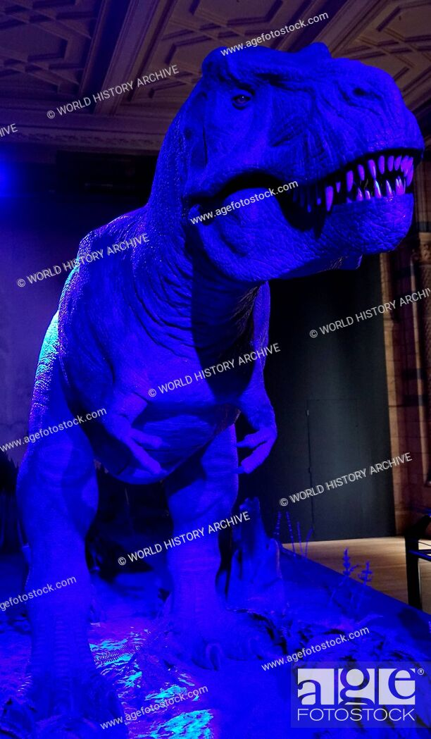 Stock Photo: Animatronic Dinosaur (T-Rex). Animatronics refers to the use on robotic devices to emulate lifelike characteristics to an otherwise inanimate object.