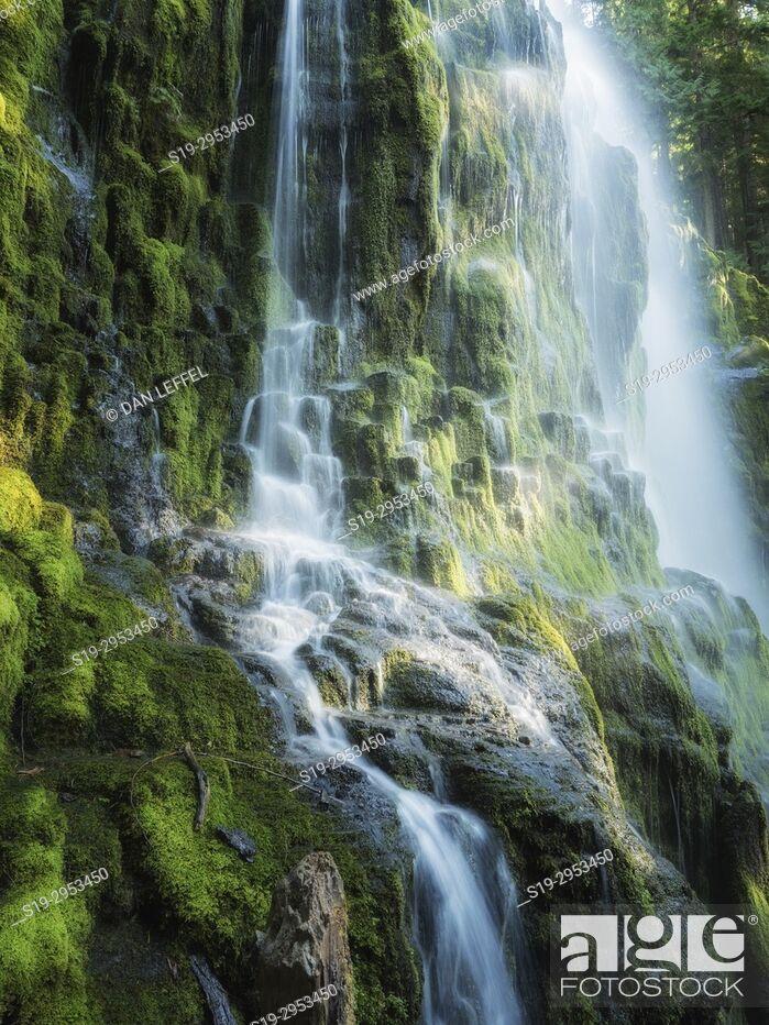Stock Photo: Proxy Falls Oregon. USA.