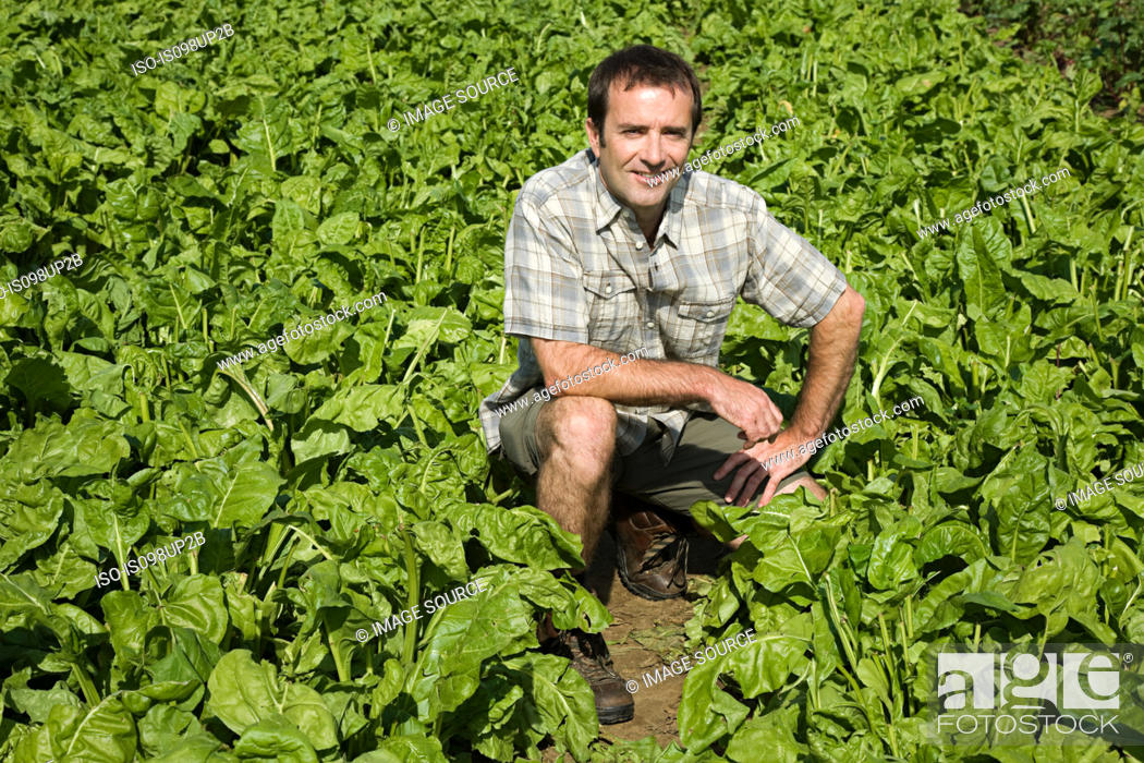 Stock Photo: Man crouching in field.