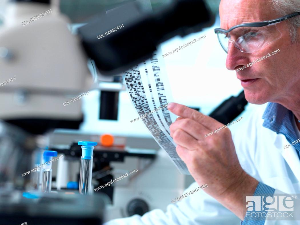 Stock Photo: Researcher holding a DNA gel during a genetic experiment in a laboratory.