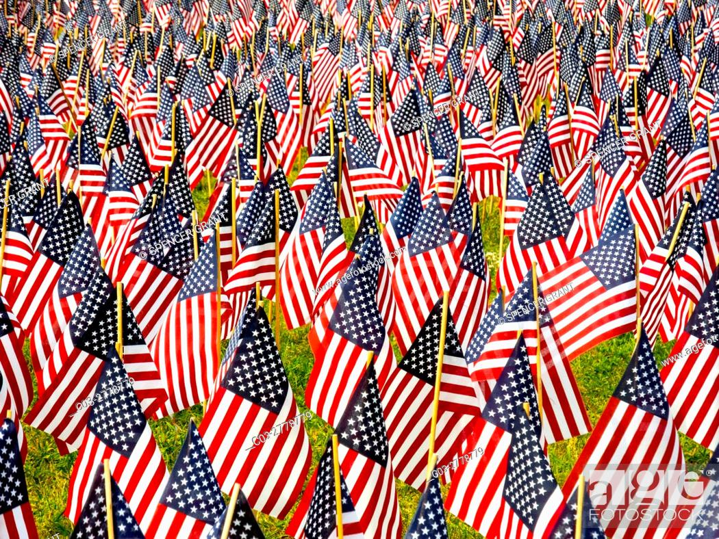 Stock Photo: A total of 37, 000 US flags are planted in Boston Common to commemorate Massachusetts combat deaths in all wars in observance of Memorial Day.