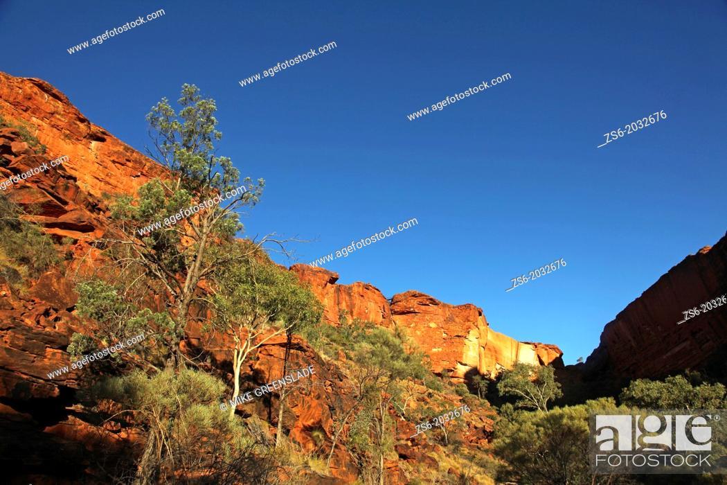 Imagen: Kings Canyon; Northern Territory, Australia.
