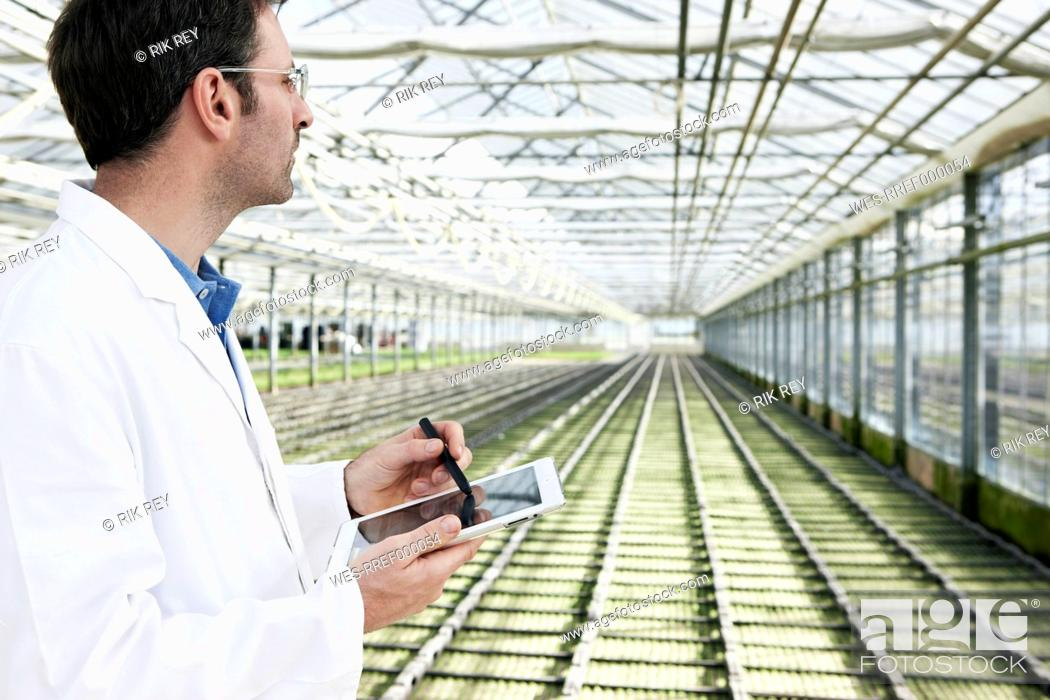 Stock Photo: Germany, Bavaria, Munich, Scientist in greenhouse with digital tablet examining bed with seedlings.