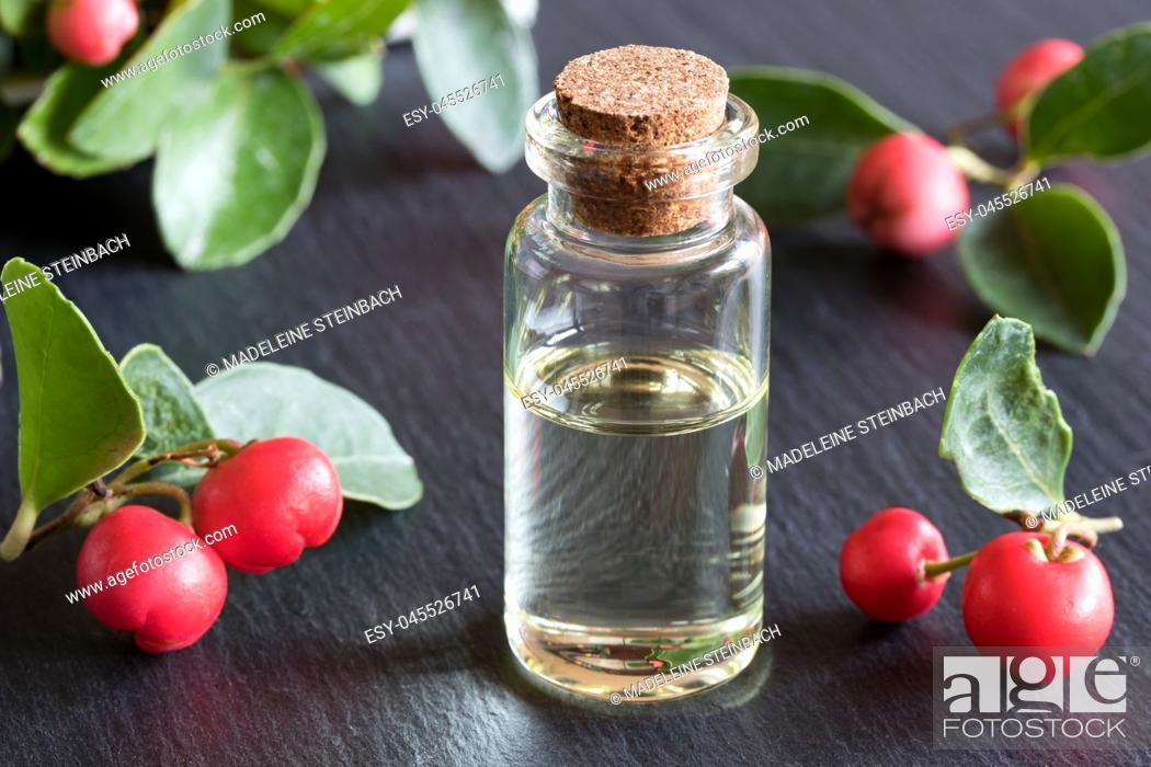 Stock Photo: A bottle of wintergreen essential oil with wintergreen twigs on a dark background.