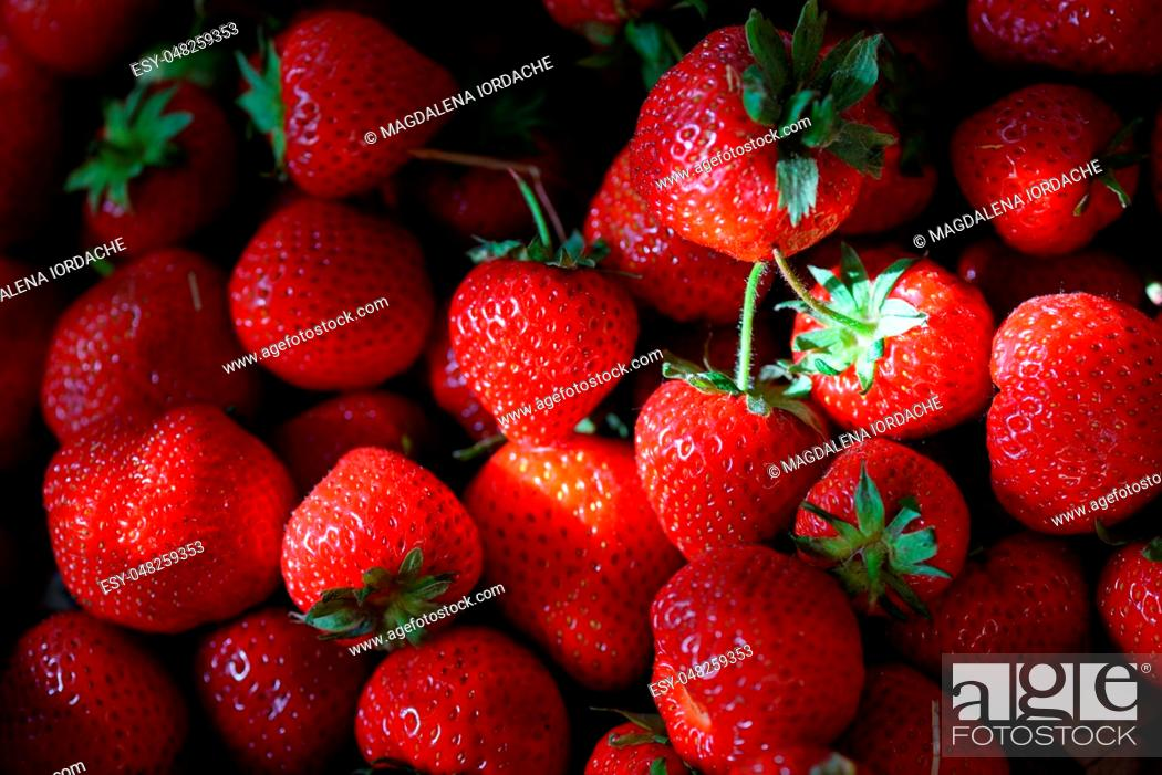 Stock Photo: Fresh ripe strawberries and sunrays.