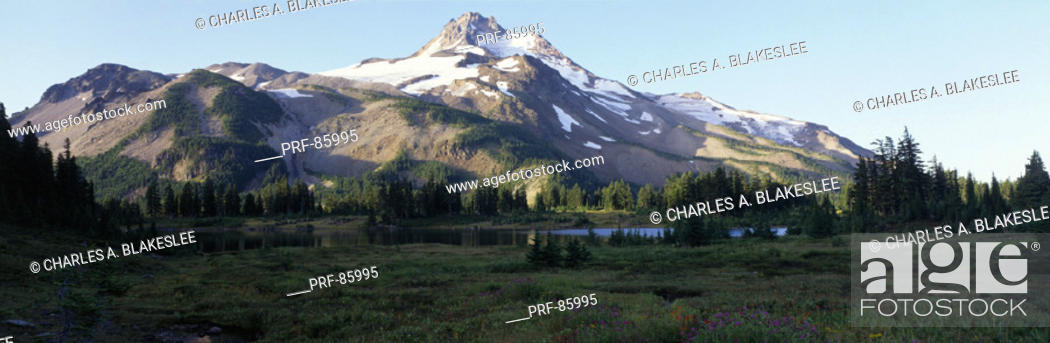 Stock Photo: Mount Jefferson Willamette National Forest Marion County OR.
