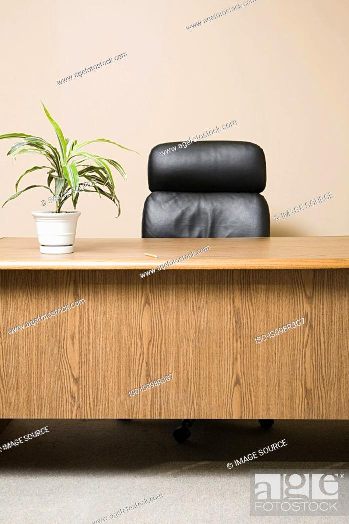 Stock Photo: Office desk with pot plant.