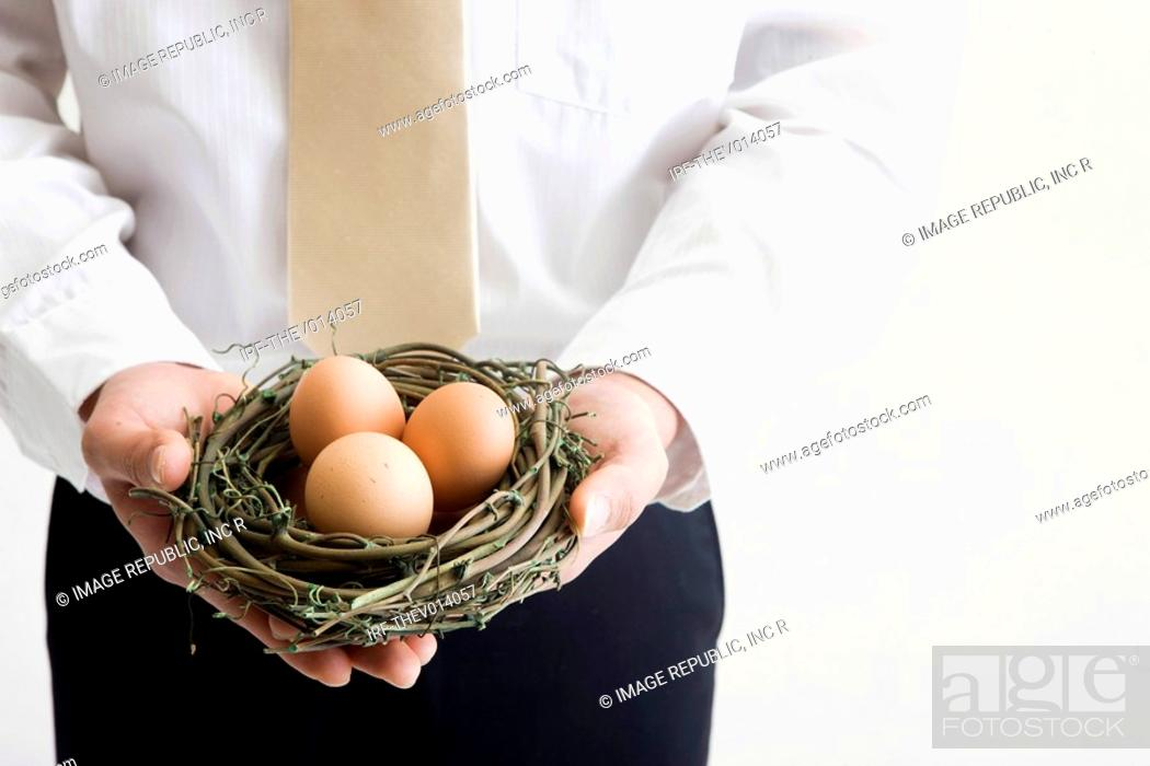 Stock Photo: businessman holding a nest.