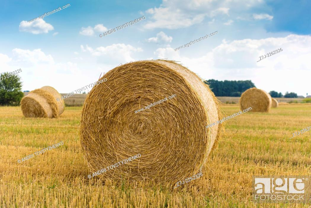 Stock Photo: boulders straw stubble field, Ukraine.