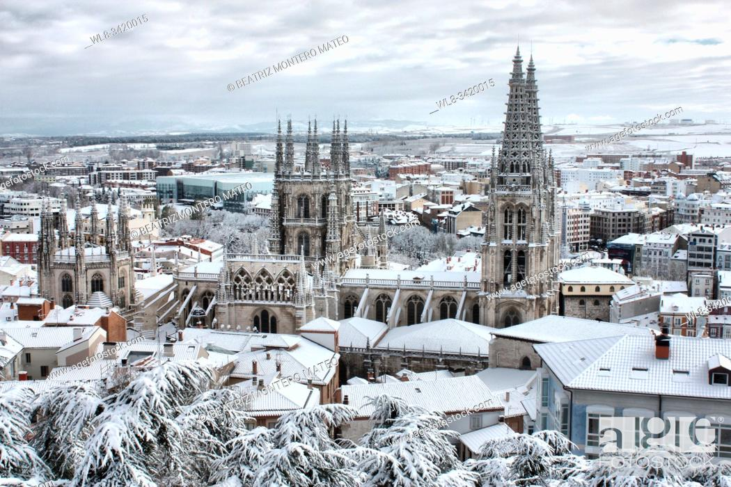 Stock Photo: Cathedral of Burgos snowy (Spain).