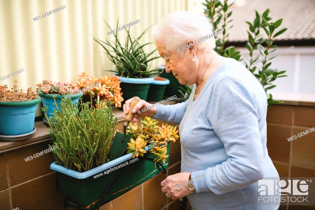 Stock Photo: Senior woman gardening on her balcony.
