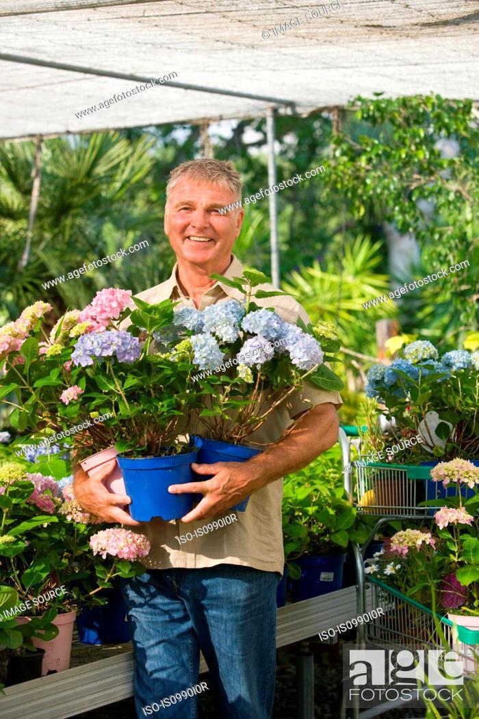 Stock Photo: Senior man with pot plants at garden centre.