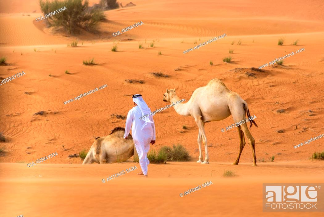 Stock Photo: Middle eastern man wearing traditional clothes walking toward camels in desert, Dubai, United Arab Emirates.