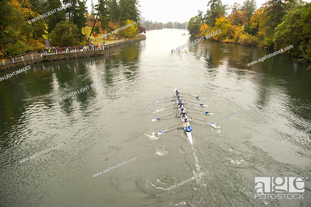 Stock Photo: Canada, BC, Victoria. Gorge waterway. Head of the Gorge rowing regatta.