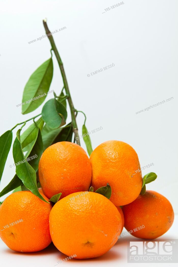 Stock Photo: oranges, typical from Valencia, Spain.