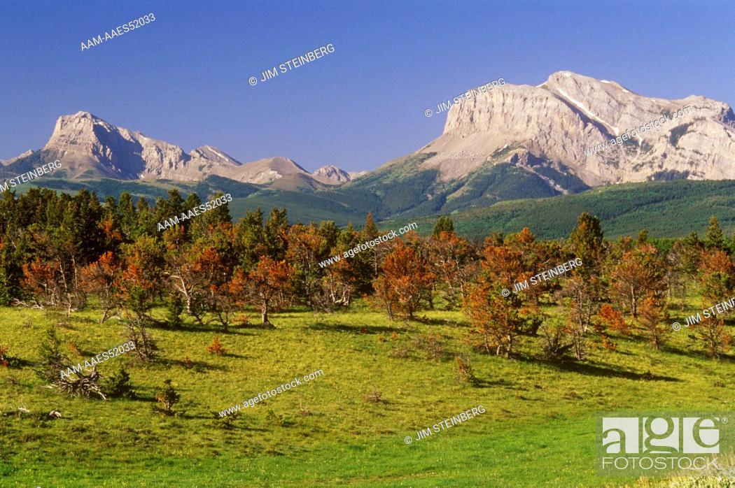 Stock Photo: Rocky Mountain Front on the Rappold Ranch, Volcano Reef, Teton Co., MT, Montana.