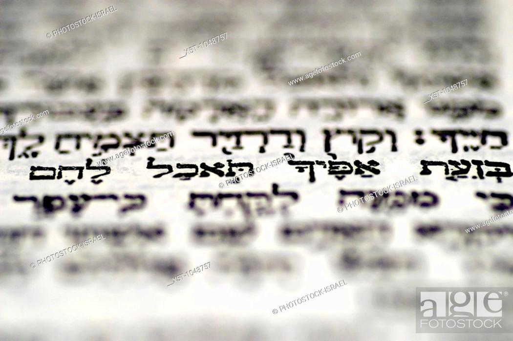 Stock Photo: Genesis 3 19: 'in the sweat of thy face shalt thou eat bread' a close up of the Hebrew text in The book of Genesis chapter 3 with this one passage in focus.