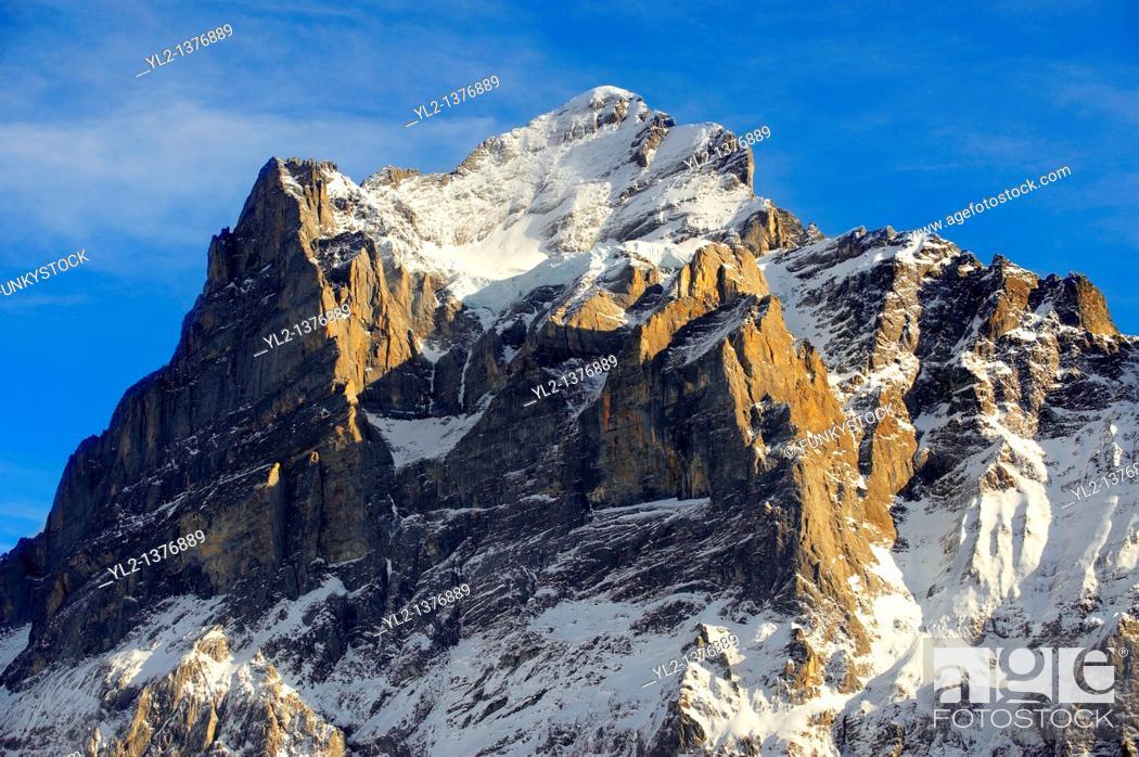 Stock Photo: Alpine slopes looking towards the Wetterhorn  Swiss Alps, Switzerland.