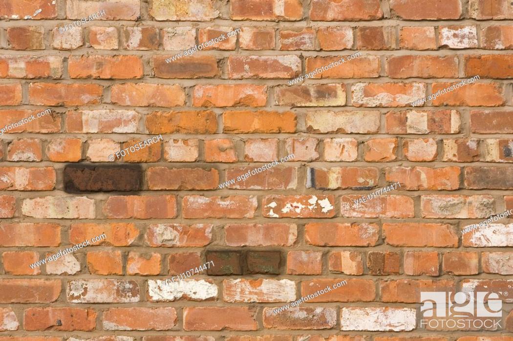 Stock Photo: Brick, Brick Wall, Brown, Close-Up, Day.