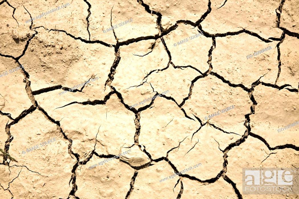 Stock Photo: Cracked earth.