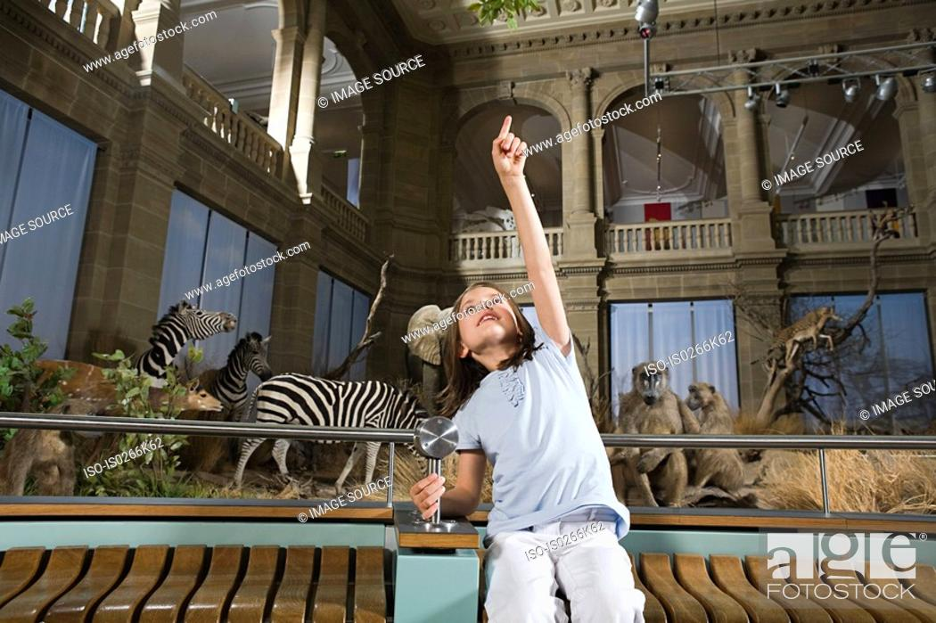 Stock Photo: Girl in a museum with stuffed animals.