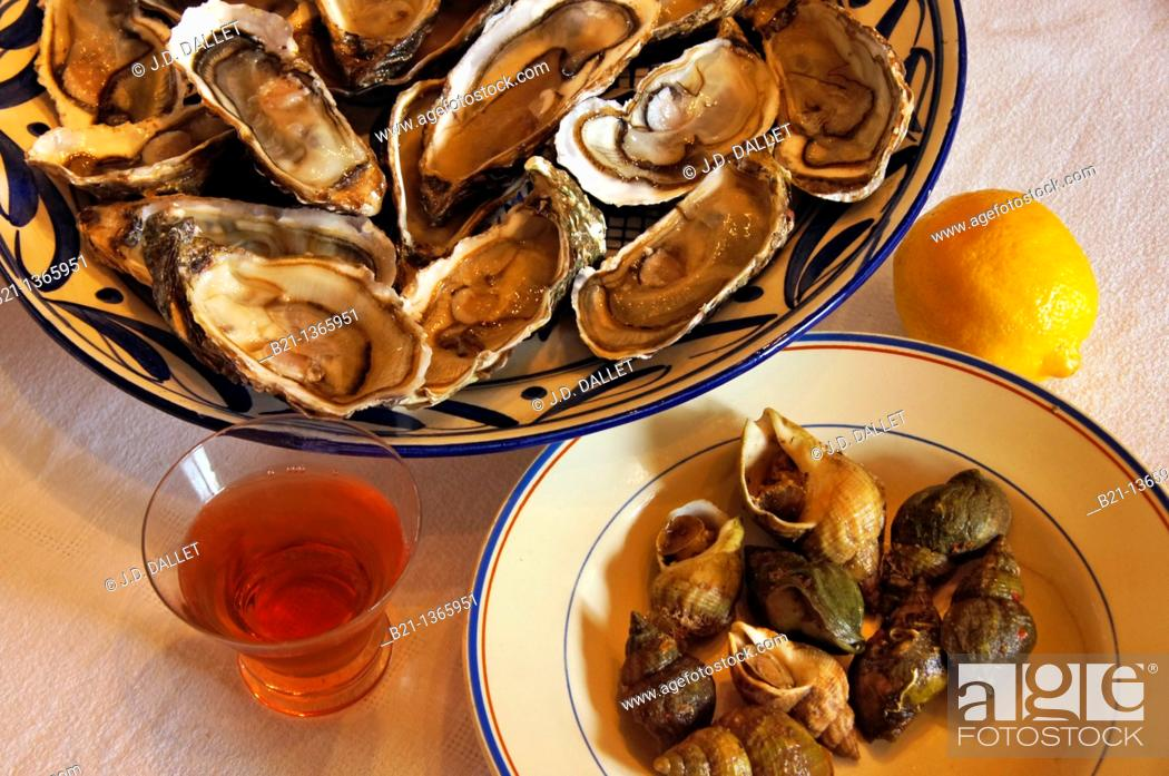 Stock Photo: Oysters and 'bulots' shellfish, Gironde, Aquitaine, France.