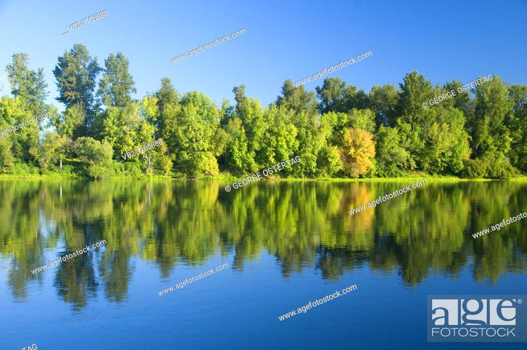 Stock Photo: Willamette River, Willamette Mission State Park, Oregon.