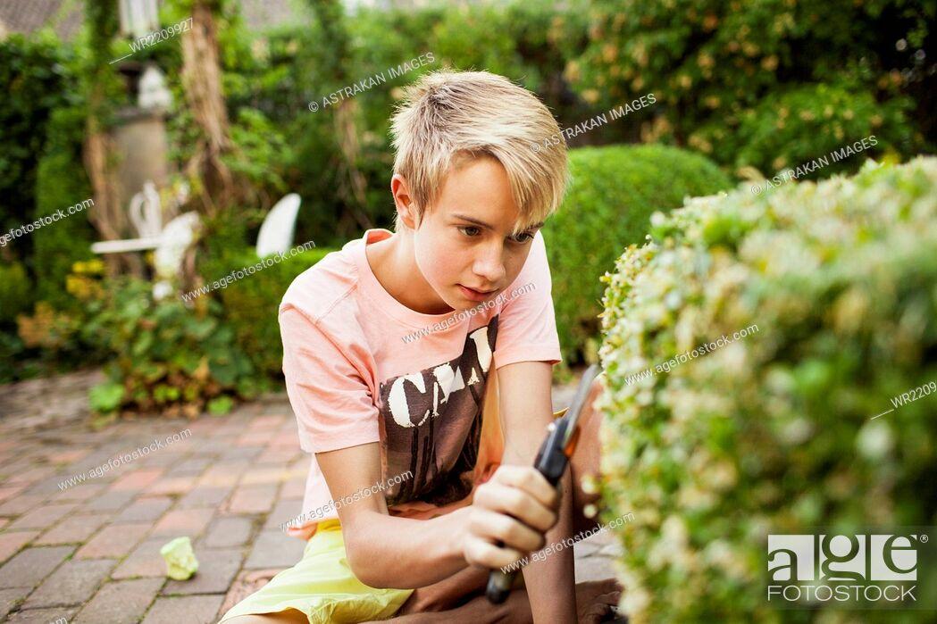Stock Photo: Teenage boy cutting plants in backyard.