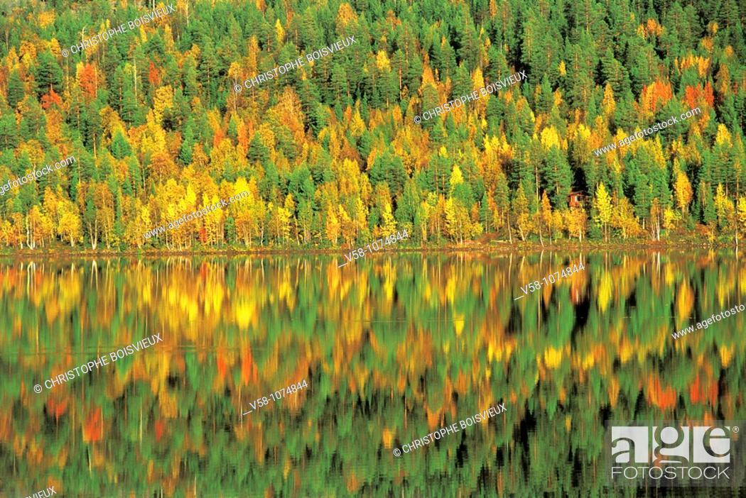 Stock Photo: Finland, Lapland, Lake Pyha in autumn.