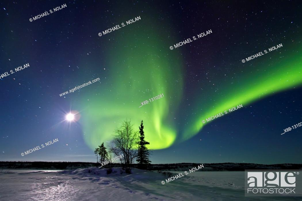 Stock Photo: Aurora Borealis Northern Polar Lights and waxing moon over the boreal forest outside Yellowknife, Northwest Territories, Canada.