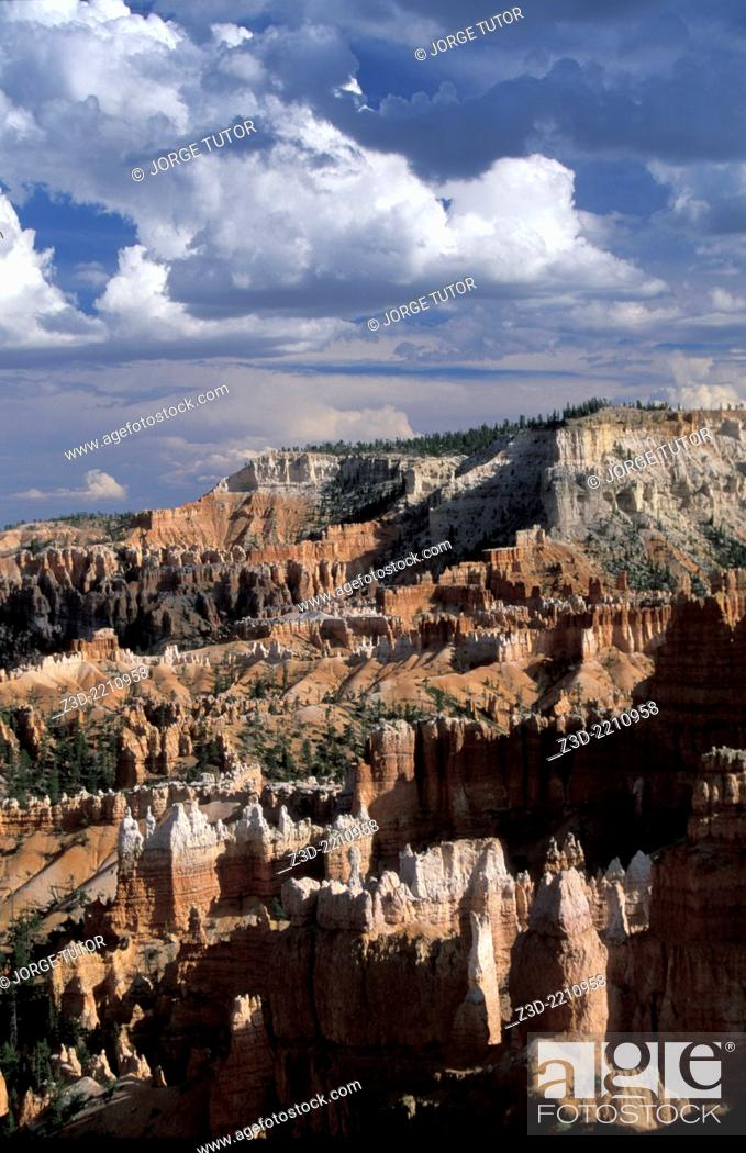Stock Photo: Bryce Canyon National Park. Utah. Bryce is distinctive due to geological structures called hoodoos, formed by frost weathering and stream erosion of the river.